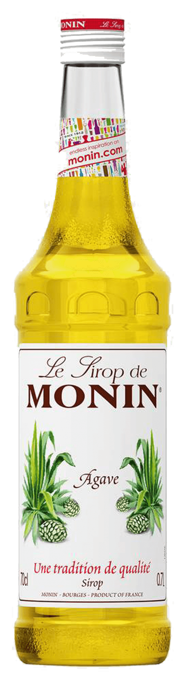 Monin_agave